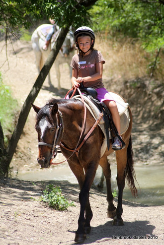 The Benefits of Horseback Riding