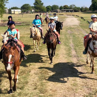 Benbrook Stables December Riding Academy