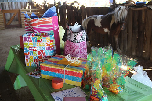 Birthday Party Package #2