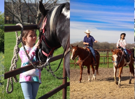 Benbrook Stables Open Now for Lessons & Trail Rides