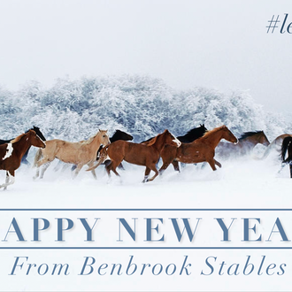Happy New Year From Benbrook Stables