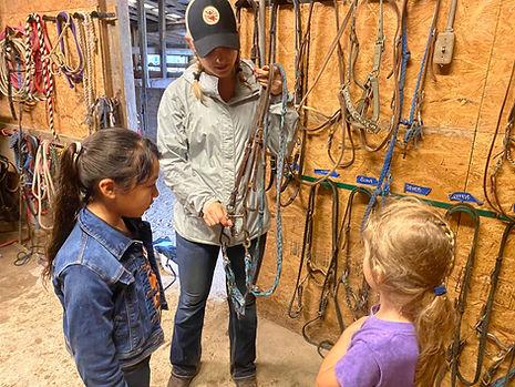 HorsesbackRiding Lessons Fort Worth Texas Benbrook Stables, Horseman ship