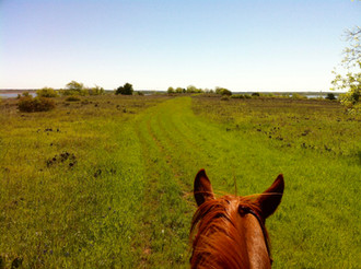Take a Trail Ride this Labor Day Weekend and SAVE!!