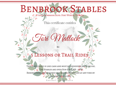 Give the Gift of Horses this Season.   Christmas Gift Certificates Available