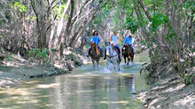 Labor Day Trail Ride at Benbrook Stables