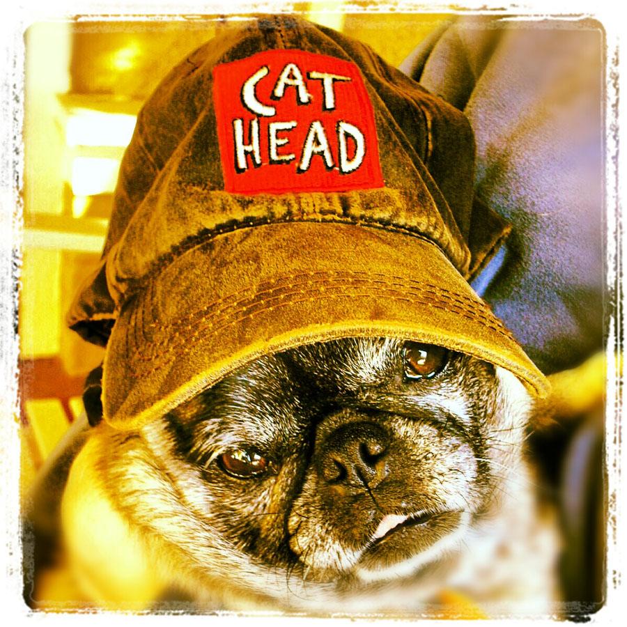 CatheadSadieCap