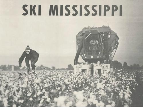 """""""Ski Mississippi"""" print w/tube"""