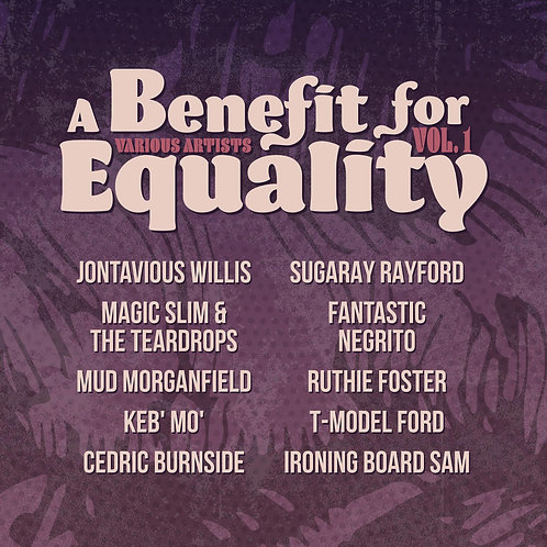 Benefit for Equality, Vol. 1 LP
