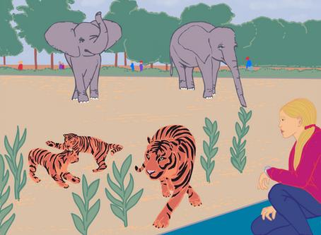 13 Zoo Inspired Homeschooling Activities