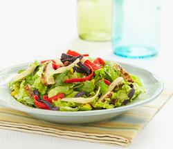 FG brite Tri-Color Salad-170 MINE