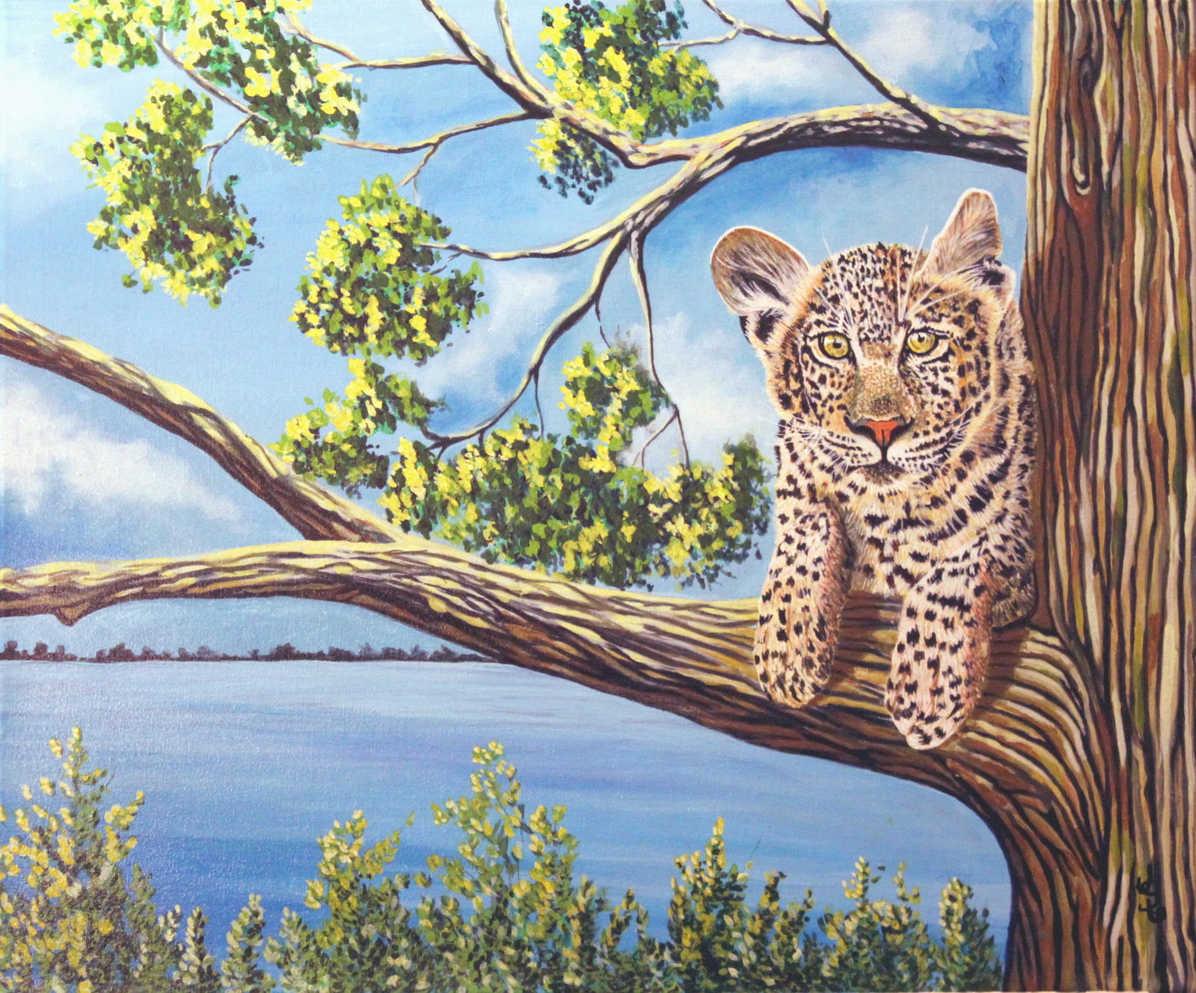 Le jeune cougar : 249$