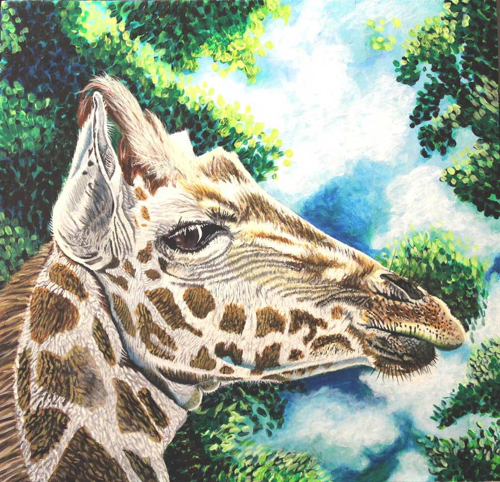 La girafe : 105$