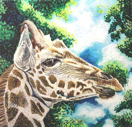La girafe : 235$
