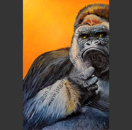 Le gorille : 1036$