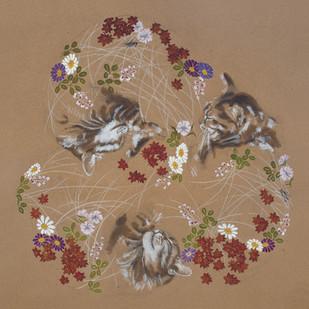 Rêve de chat I automne