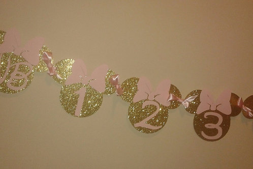 Minnie Mouse Inspired 12 Month Banner