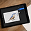 Thumbnail: Nuthatch