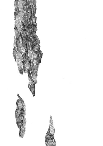 Title page illustration: stalagtite/mite