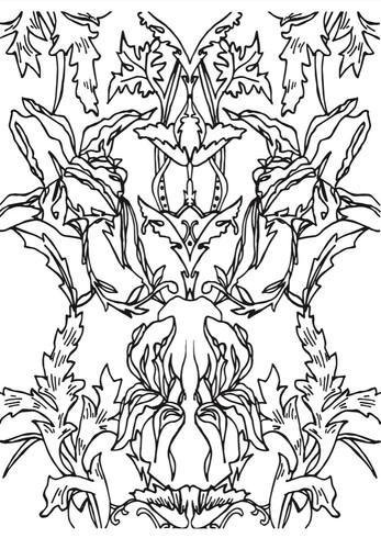 Iris block design