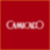 Partner_Camicado.png