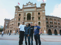 Madrid Bull Fighting