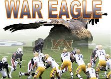 War_Eagle_1.JPG