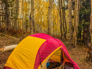 Car Camping 101: The top 10 items you need for camping