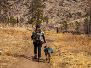 Hiking Etiquette 101: The top 5 things to know about being a polite hiker