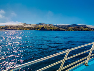 Camping Catalina Island: Everything you need to know before planning your island adventure