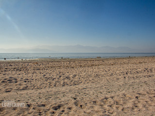 The Salton Sea, Imperial County California: That's not sand, it's fish bones