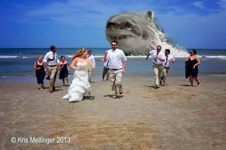Destination Wedding Outer Banks NC