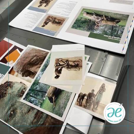 Impression du livre sur l'artiste Ousman Sow