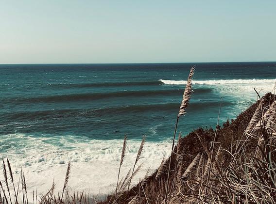 web.ocean.jpg