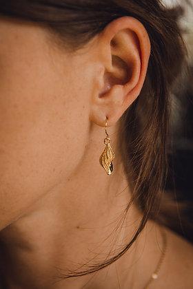 Boucles d'oreilles SHELL