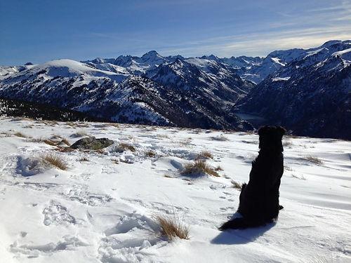 joey.sneeuw.bergen.jpg