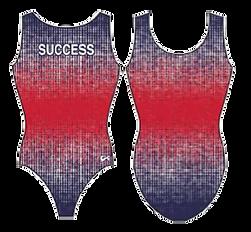 Leo - SUCCESS 1 SUCEESS 2 Pre-XCEL.png