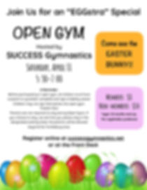 Easter Open Gym 2020 Flyer.jpg