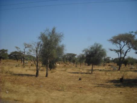 Hors P.I.S.T.E. Afrique 2014: Projet confirmé!!!