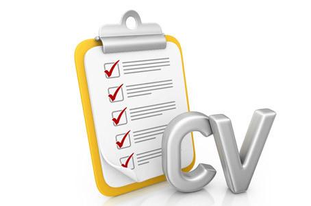 Les 10 commandements pour un CV sans fautes