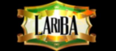Lariba Logo_edited.jpg