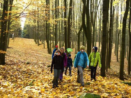 Podzimky v Polné