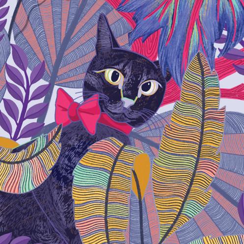LEVI THE CAT