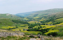 Swaledale in Summer.jpg