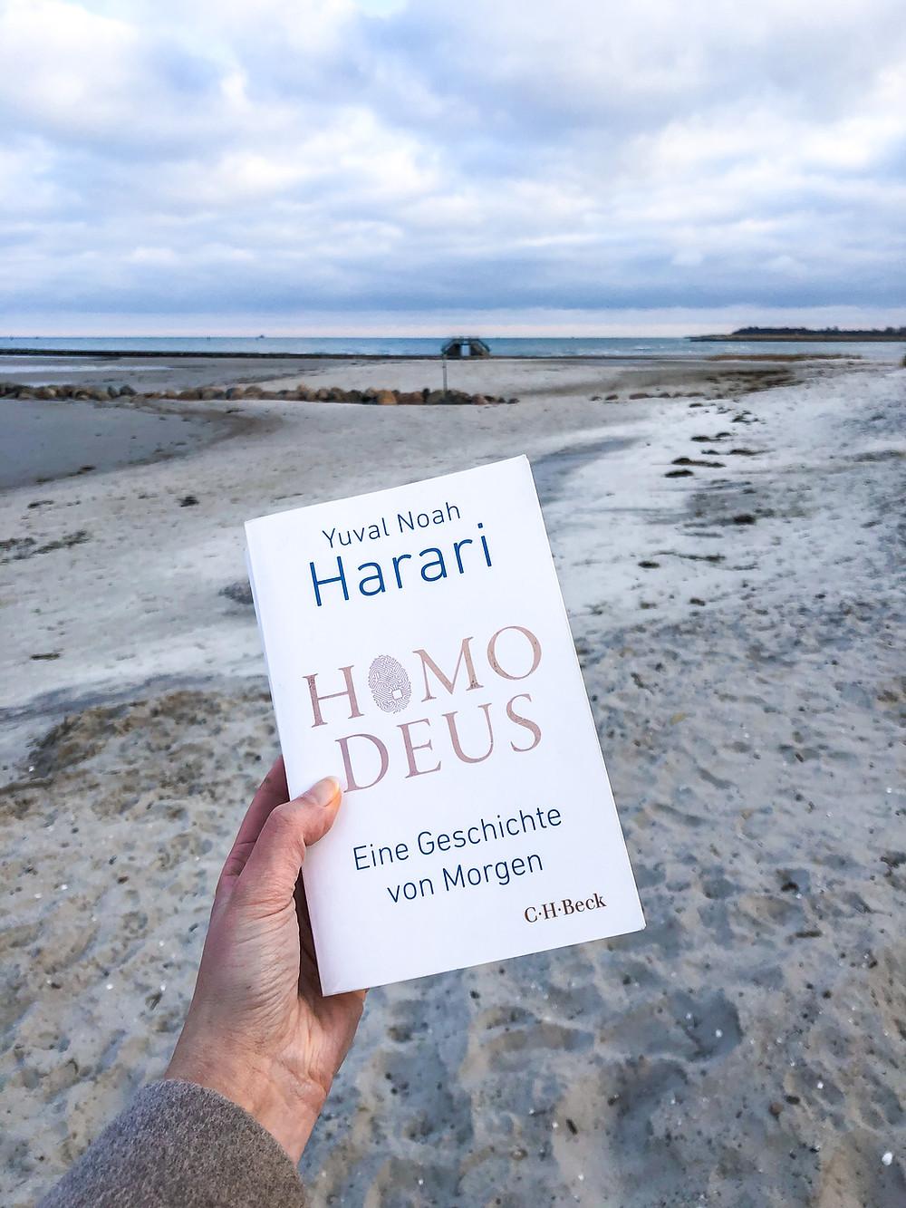 Im Homo Deus erläutert der Philosoph Yuval Harari die Zukunft der Menschheit und welche Branchen den Wandel in Zukunft vorantreiben werden.