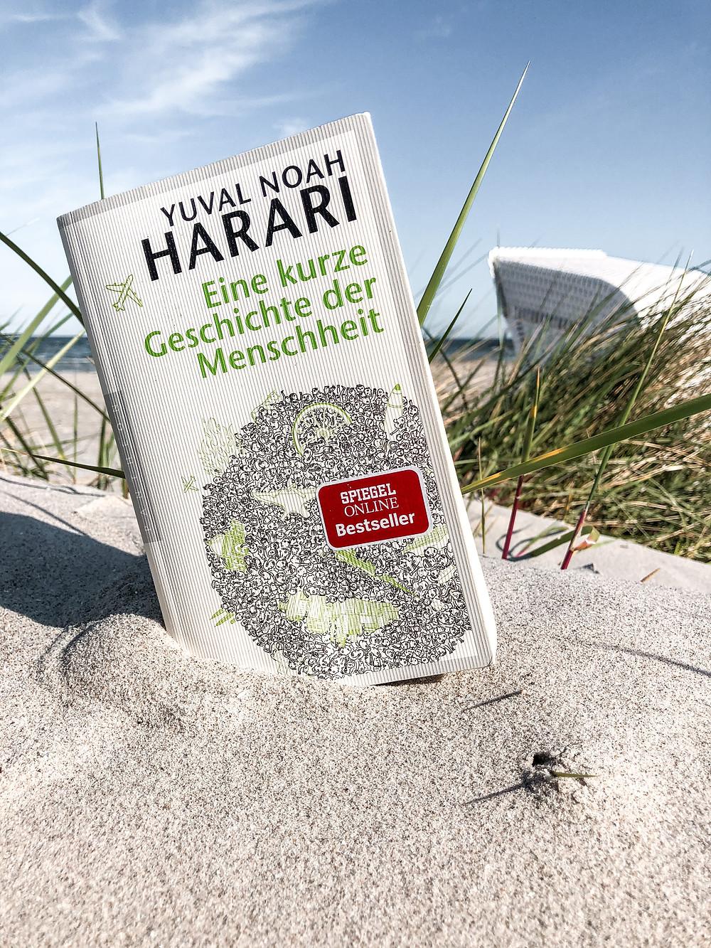 In Eine kurze Geschichte der Menschheit erklärt Bestseller-Autor Yuval Harari wie es der Mensch geschafft hat, zur dominierenden Spezies auf der Erde zu werden und welche Konsequenzen das für die Umwelt hat.