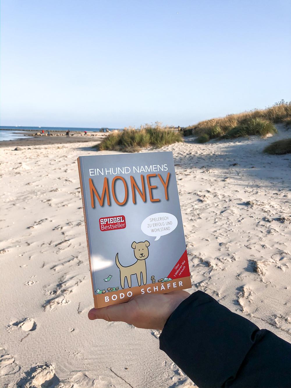 In ein Hund namens Money erlebt man die Geschichte der kleinen Kira, die es schafft durch den zugelaufenen Hund Money ihren Umgang mit Geld vollkommen zu verändern und ihr Money-Mindset zu verbessern.