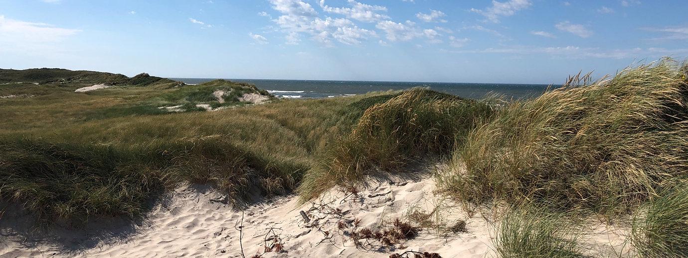 Die dänische Nordseeküste ist ein ein dünenreicher Traum, der im Sommer zum Paradies für Strandurlauber wird.