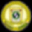 Selo_Oficial_FES_color_400x400.png