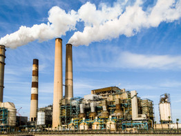 Cuidar do meio ambiente é cuidar da saúde – Saiba mais sobre os créditos de carbono
