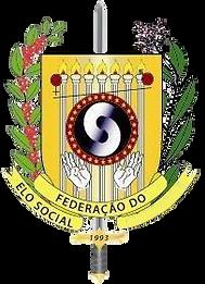 LOGO FES.png
